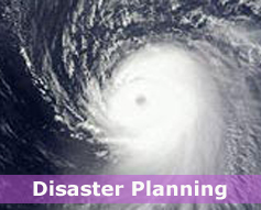 IRS - Disaster Planning
